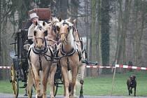 Zahájení turistické sezony v Muzeu kočárů v Čechách pod Kosířem