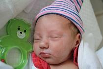 Elizabeth Škvarková, Biskupice, narozena 22. září 2019 v Prostějově, míra 48 cm, váha 2650 g