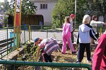 Děti osázely ulice Mostkovic