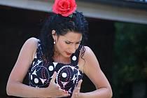 Aires del Sur (Flamenco Olomouc)