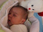 Dominik Suchý, Kostelec na Hané, narozen 23. května v Prostějově, míra 50 cm, váha 3700 g
