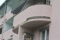 Muž bydlící v městském bytě v Prostějově si stěžuje na jeho stav. Na balkónu mu vyrostl javor.