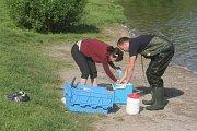 Odběr vzorků vody na plumlovské přehradě - 14. května 2018