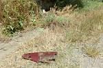 Na silnici nedaleko Otinovsi vyhasl v pátek večer při bouračce život mladého motorkáře. Tragickou srážku s oktávkou zřejmě nezavinil a na místě i přes veškerou snahu záchranářů způsobeným zraněním bohužel podlehl.