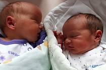 Veronika a Kristýna Junovy, Dolní Studénky, narozeny 8. června 2020, míry 48 a 49 cmváhy 2610 a 2780 g