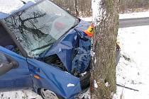 Řidič s puntem napálil do stromu