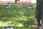Z několika desítek informačních cedulek, které na bývalém židovském hřbitově umístili účastníci pondělního pietního aktu, už zbyla na místě necelá třetina.
