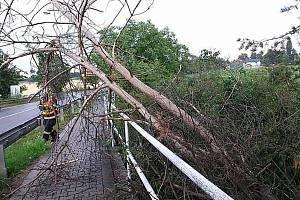 Hasiči uklízejí následky bouřky u Olšan u Prostějova - 28. 7. 2019