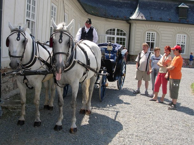 Projížďky kočárem pořádá Václav Obr v Náměšti na Hané každý rok.