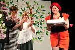 Hanáckého divadelní máj v Němčicích nad Hanou. Ilustrační foto