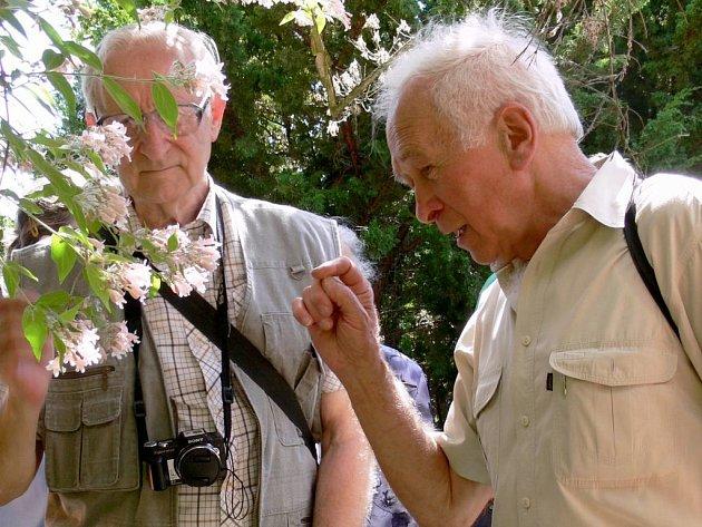 Slavnost v prostějovské botanické zahradě k jejich pětasedmdesátinám. Všechny zájemce během ní mezi rostlinami ochotně provázel profesor Masarykovy univerzity v Brně Vladimír Řehořek (na snímku vpravo)