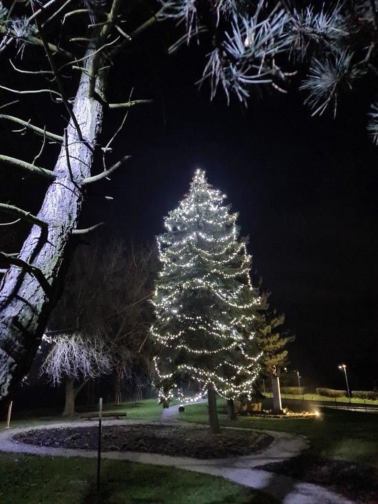 Vánoční strom 2020 v Bělotíně