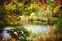 Podzim na Prostějovsku.