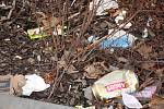 Odpadky na záhonku na parkovišti u prostějovského Lidlu na Újezdě - středa 26. 2. 2020