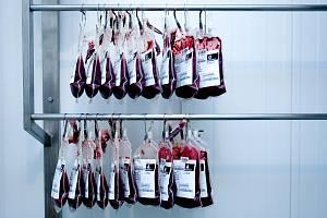 Odběr krve. Ilustrační foto