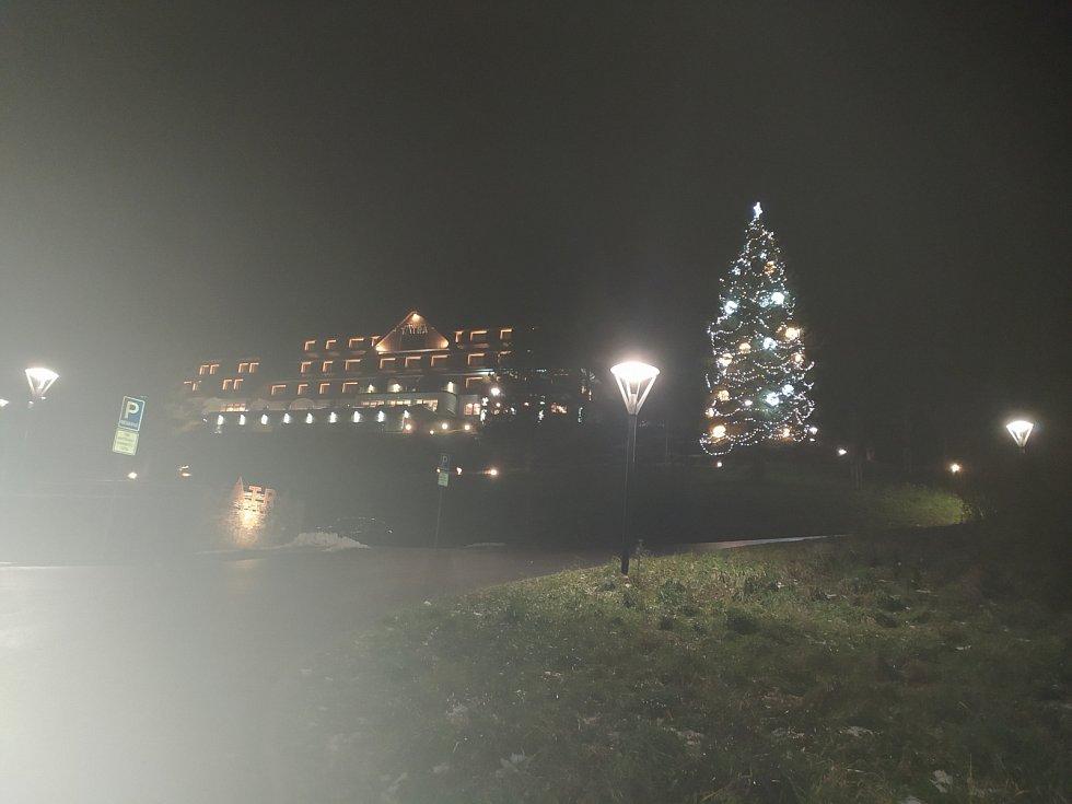 Vánoční strom ve Velkých Karlovicích