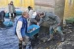 Výlov rybníka v Dětkovicích