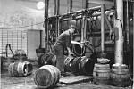 d r. 1953 patřil pivovar pod nově vzniklou společnost Olomoucké pivovary n.p., po jejím zániku v roce 1955 opět pod podnik Hanácké pivovary n.p. a od roku 1960 přešel ke společnosti Jihomoravské pivovary n.p. Brno.