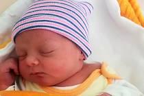 Terezie Petříková, Olomouc, narozena 4. srpna 2020, míra 50 cm, váha 3520 g
