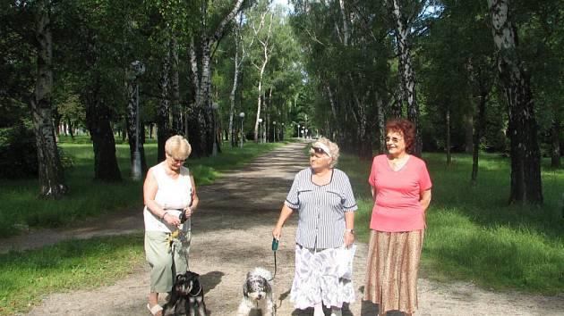 V hlavní aleji chybějí lavičky i koše na psí exkrementy.