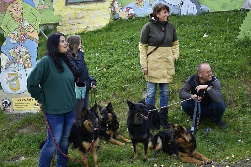 Historické psí plemeno - Chodský pes, mělo první svod ve Žraloku. 4.10. 2021
