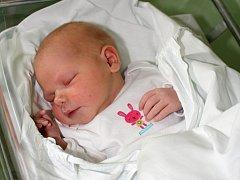 Eliška Maráková, Prostějov, narozena 29. srpna, 50 cm, 3700 g