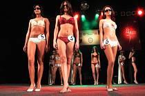 Diváci nejvíce ocenili promenádu ve spodním prádle.