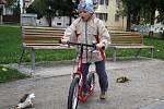 Akce Zdravé město Prostějov v Kolářových sadech