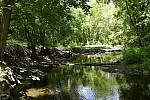 Úžasný kousek přírody přímo ve městě, to je prostějovský Biokoridor Hloučela. 27.5. 2020