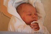 Dominik Ondroušek, Niva, narozen 1. prosince v Prostějově, míra 49 cm, váha 2950 g