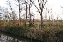 Místo u říčky Hané nedaleko Němčic nad Hanou, kde byla nalezena mrtvola