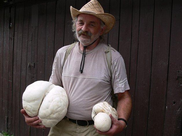 Zdeněk z Prostějov našel v lese pýchavky o průměru padesáti centimetrů.