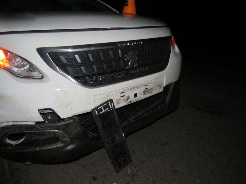 Auto srazilo divočáka