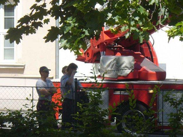 Zásah hasičů ve Smetanových sadech