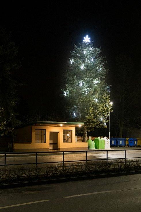 Vánoční strom 2020 v Pňovicích