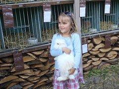 Sobota u Plumlovského zámku nepatřila jen Keltské noci, ale i teddy králíčkům, kterých se tu díky Svazu chovatelů v Plumlově.