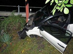 Řidička poničila při nehodě nejen vozidlo ale i jeho okolí.