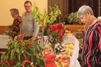 Jablka, papriky, švestky ale také víno nebo dýně. Zahrádkáři z Olšan i okolí na výstavě ukázali, co se jim podařilo vypěstovat.