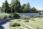 V Botanické zahradě se skrývá spousta zajímavé zeleně. 28.7.2020