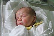 Dominika Šlofová, Jedovnice, narozena 17. srpna v Prostějově, míra 49 cm, váha 3350 g