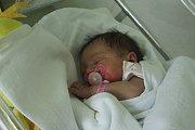 Tereza Peterková, Ptení, narozena 23. listopadu v Prostějově, míra 49 cm, váha 3750 g