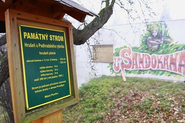 Památná hrušeň a občerstvení uSandokana na hrázi Podhradského rybníka