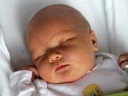 Šárka Langerová, Výšovice, narozena 4. října v Prostějově, míra 53 cm, váha 3800 g