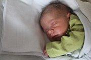 Žaneta Pocklanová, Lutín, narozena 12. prosince, 50 cm, 3450 g