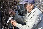 Nákup ovocných stromků v Otaslavicích