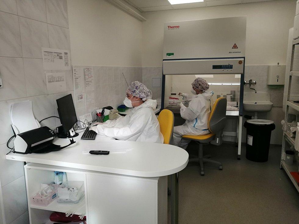 Laboratoř lékařské mikrobiologie Oddělení laboratorní medicíny Nemocnice AGEL Prostějov. 5.11. 2020