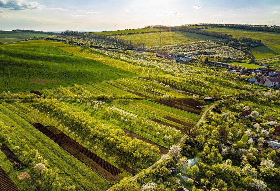 Snímek Radovana Chvíle do soutěže TSTTT kategorie Ekologické zemědělství. Boršice