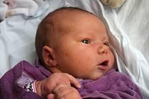 Adéla Horáková, narozená 22.12.2015; Bedihošť; váha: 4 400 g, výška: 51 cm