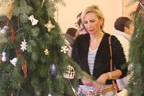 Vánoční výstava ve Dzbelu