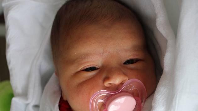 Emilie Doleželová, Prostějov, narozena 9. února, 50 cm, 3400 g